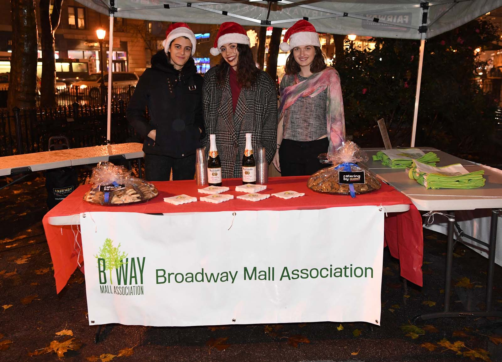Winter Lighting 2018-2019 – Broadway Mall Association